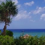 水産庁、沖縄周辺サンゴ密漁の被害調査へ・・・小笠原は?