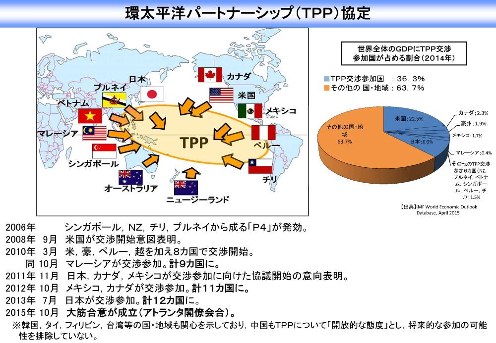 151015 TPP概要